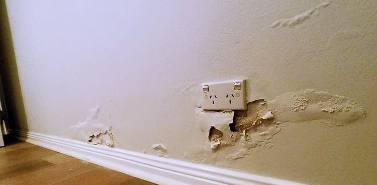 rising damp wall